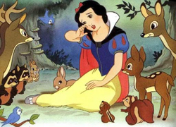 디즈니 공주의 관상