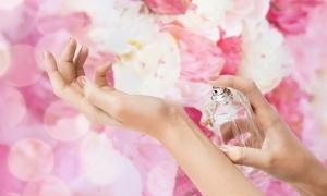 향긋한 꽃 향 담은 '봄향수' 5