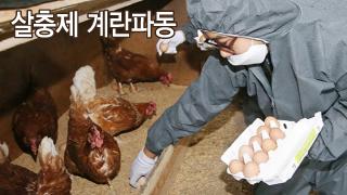 손 놓은 정부, 방관한 국회가 '살충제 계란' 불렀다