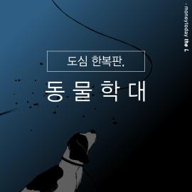 """[카드뉴스] """"죽은개니까 마음대로 훼손"""", 동물보호법 위반 여지 없나"""