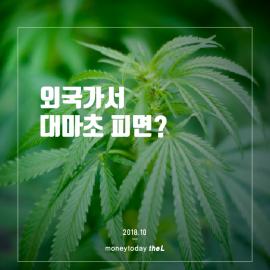 [카드뉴스] 외국 가서 대마초 피면?