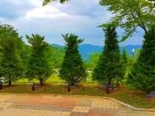 자연장이 있는 메모리얼 파크, 추모공원 '별그리다'