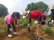 나사렛대 학생들, 농촌봉사활동