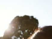 여름철 자외선 피부 노화..비타민C 도움