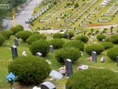 전국 장묘시설 비교 상담 가능한 '더메모리얼서비스' 출시