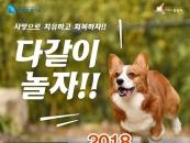 화성시 반려동물 어울림 한마당축제 개최