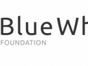 블루웨일, 글로벌 친환경 블록체인 기업 씨드와 MOU