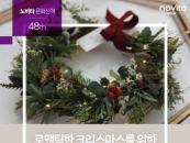 콜러노비타, 12월 문화산책 참가자 모집