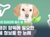 [영상]반려동물 제품·서비스 업체 정보 한 눈에…'펫트워크' 앱 인기