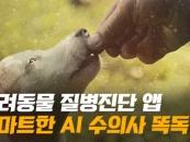 [영상]똑독, 반려동물 예상 질병·진료비·동물병원 정보까지 한 눈에