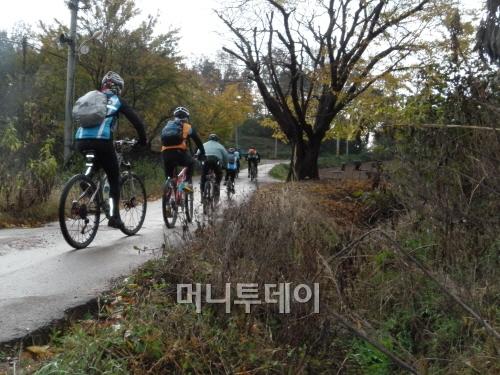 [포토]뒷동산과 해송 지나 궁평항 가는 길