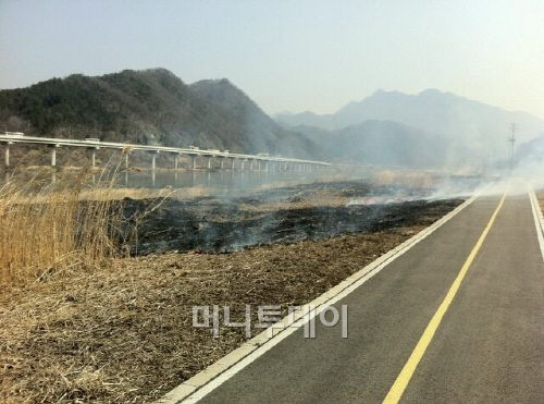 [포토]봄맞이 한창인 북한강자전거길