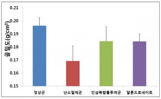 ▲인삼복합물의 골밀도 증가 효과(출처=농촌진흥청 보도자료)