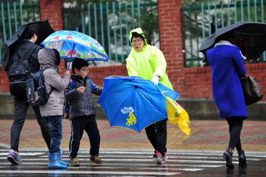 강한 바람을 동반한 비로 인해 한 초등학교에서 신호를 기다리고 있던 초등학생의 우산이 바람에 부러지고 있다. /사진제공=포항 뉴스1 최창호 기자