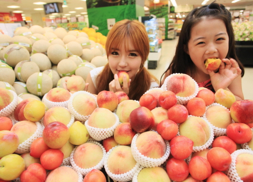 16일 오전 서울 용산구 이마트 용산점 과일매장에서 모델들이 올해 첫 출시한 햇자두와 복숭아를 홍보하는 행사를 벌이고 있다.