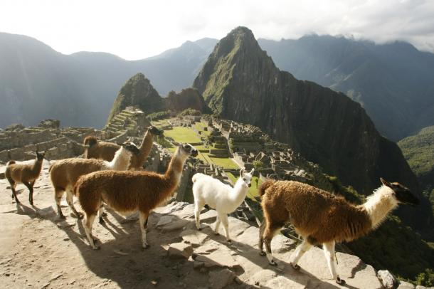 페루 마추픽추, '가장 가보고 싶은 여행지'로 뽑혀…여행자 백만 명 지지 얻어
