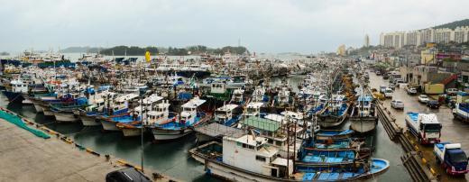 태풍 '너구리' 최근접, 여수항에 피항한 선박들