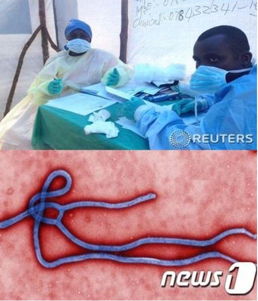 에볼라 바이러스/사진=로이터 뉴스1