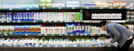 한 고객이 대형마트 내 우유 판매대에서 우유를 고르고 있다. /사진=머니투데이DB