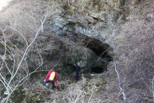 ▲용소동굴 천연기념물 지정. 사진은 동굴 초입