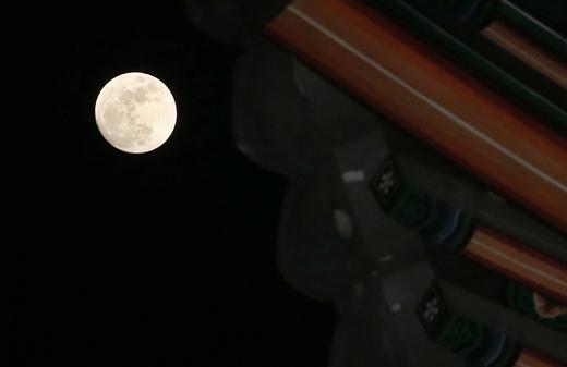 '내일 날씨' '정월대보름' /사진=뉴스1