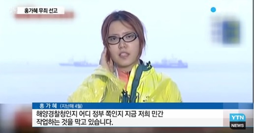 '홍가혜 비방댓글 고소' /사진=YTN 뉴스 캡처