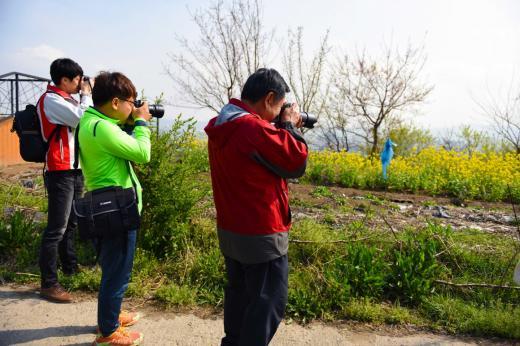 8일 광주 발산창조문화마을 사진촬영대회 참가자들이 발산마을의 추억을 사진에 담기 위해 촬영에 몰두하고 있다.