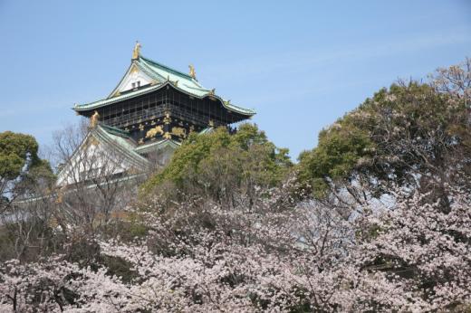 """""""일본·대만·중국"""" 해외여행 스테디셀러…장거리 여행도 관심 폭증"""