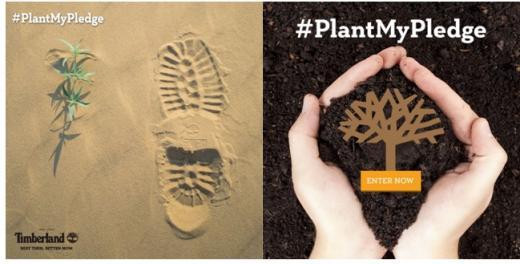 팀버랜드, 글로벌 그린 캠페인 '#PlantMyPledge' 진행