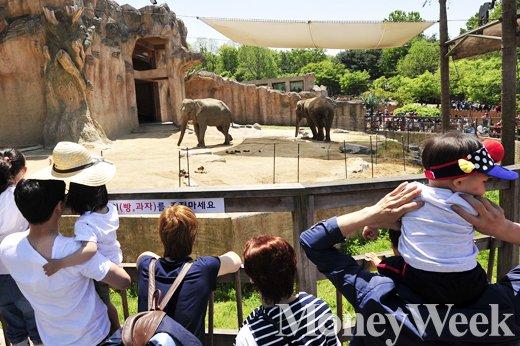 """[MW사진] 오늘은 어린이날, """"코끼리 아저씨 보러 왔어요"""""""