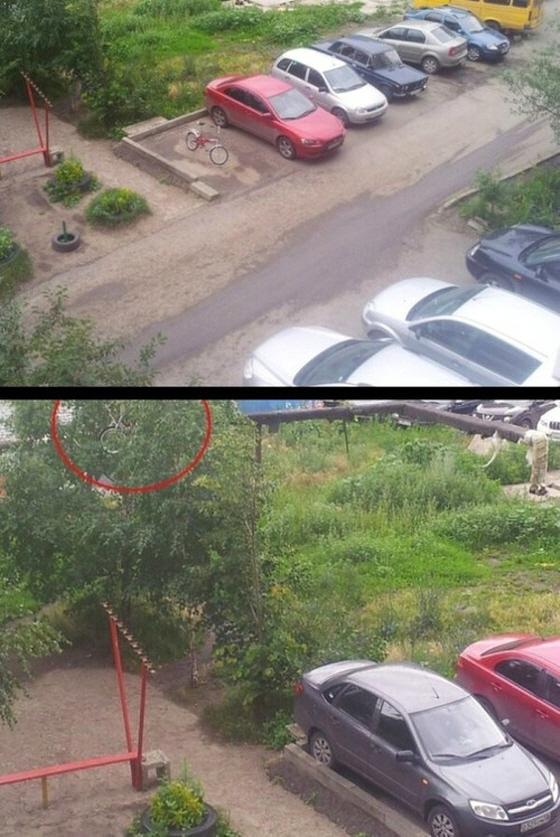 주차장 한 복판을 차지했던 자전거가 나무 위(붉은색 원)에 걸려있다./사진=보배드림 캡처