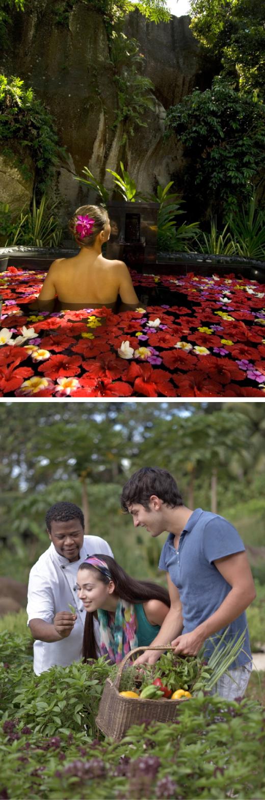 ▲(위로부터) 꽃잎 목욕, 오가닉 가든 투어