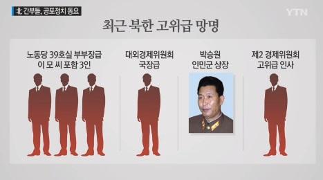 '북한 망명' /사진=YTN 캡처