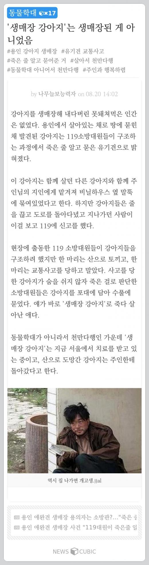 [오늘의 뉴스큐빅] '생매장 강아지' 알고보니… 앞으론 '간호조무사' 말고 '간호지원사'