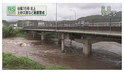 /자료=일본 NHK 홈페이지 캡처