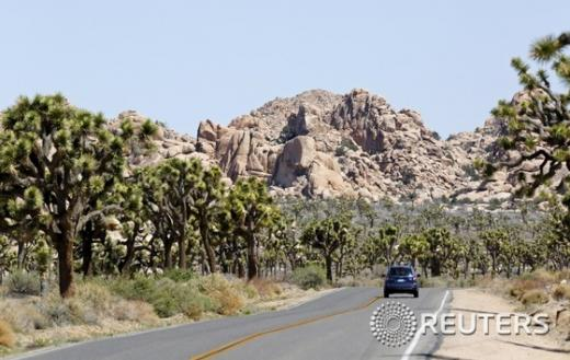 '미국 페스트' 사진은 페스트가 발병한 요세미티 국립공원. /사진=뉴스1(로이터 제공)