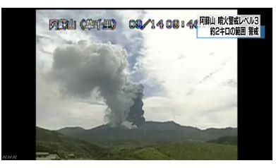 /자료=일본 NHK 뉴스 캡처