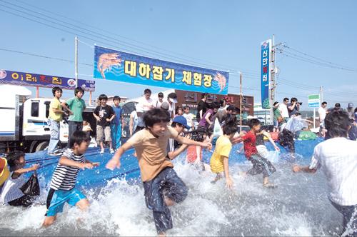 홍성 남당항 대하축제.