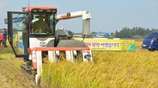 전남농협 강남경 본부장은  15일 영암군 군서면 들녘에서 직파재배 시범단지의 첫 수확을 위해 콤바인을 몰고 있다.