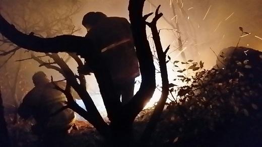 '청계산 화재'./사진=뉴스1DB