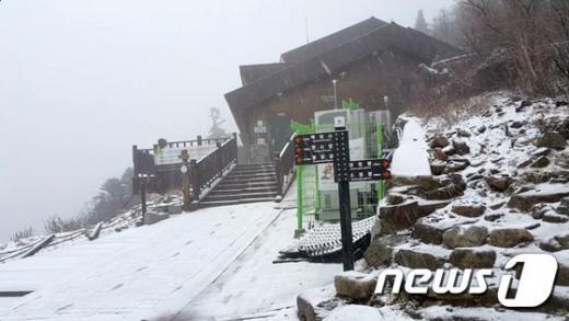 18일 오전 강원 설악산 중청봉 일원에 눈이 내리고 있다. /자료사진=뉴스1(설악산국립사무소)