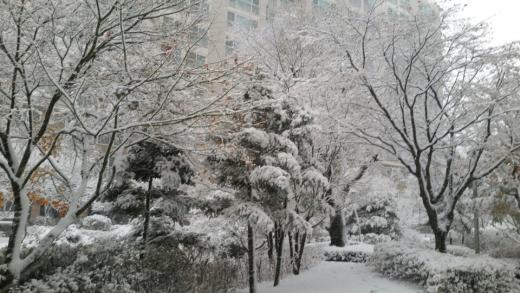 '충남 천안 날씨' 26일 오전 7시 충남 천안 쌍용동. /사진=독자 제공