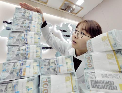 KEB하나은행 본점 위변조 대응센터에서 직원이 달러를 정리하고 있다. /사진=뉴시스 박문호 기자