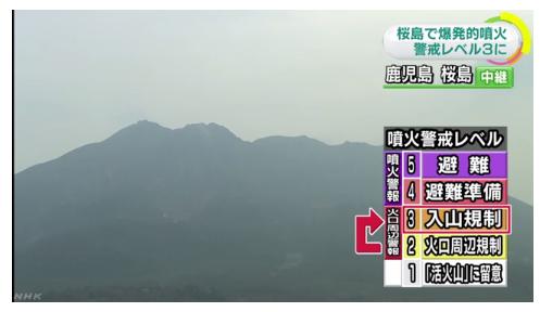 /자료=일본 NHK 뉴스