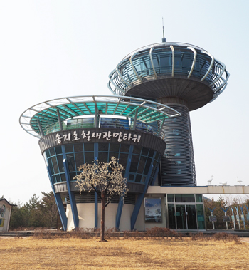 송지호 철새관망타워