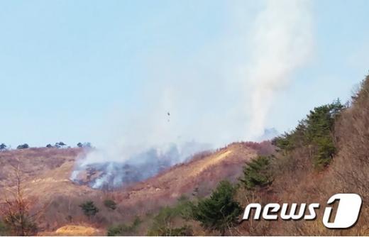 '파주 사격장 화재' 사진은 기사 내용과 무관. /자료사진=뉴스1