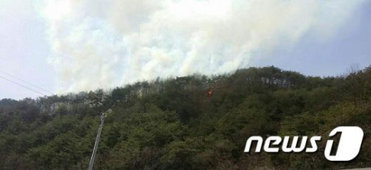 오늘(1일) 낮 12시45분쯤 강원 양구군 남면 송우리의 비봉산에서 불이 났다. /사진=뉴스1(양구군 제공)