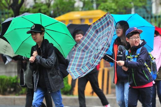 경북 포항시 전역에 강풍을 동반한 세찬 비바람이 몰아치자 등굣길에 나선 초등학생들이 힘들어하고 있다. /사진=포항 뉴스1 최창호 기자