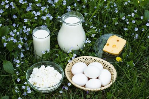 단백질 음식. /자료사진=이미지투데이