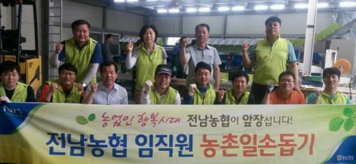 전남농협, 광양 매실 첫 출하 '일손돕기'